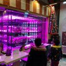 新鮮な魚や野菜が安価で手に入る場所【杜の市場】