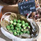 【自由が丘】産地直送!珍しい西洋野菜がいっぱいの八百屋さんMERCATOメルカート