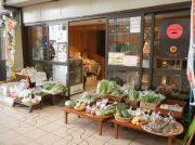 新鮮野菜に高槻土産のチーズケーキ「紅い月」が好評!芥川商店街「こすもす」