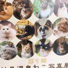 vol.84 ねこ写真展と温泉@妙見温泉ねむ