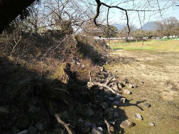 kumamoto (7)