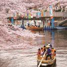 春はゆっくり深川散策を楽しもう!「こうとうトコトコ日和 2019春号」発行