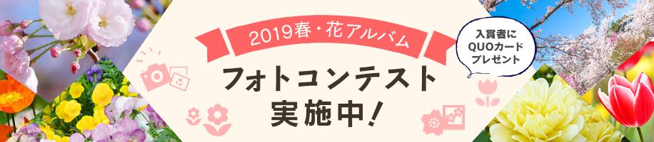 「2019春・花アルバム」フォトコンテストを実施中! 入賞者10人にクオカードをプレゼント