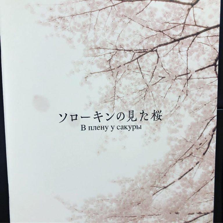 日露戦争時代の哀しい恋の物語・映画『ソローキンの見た桜』