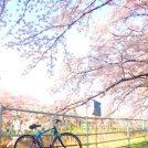 街ぬり絵&写真コンテスト「写真部門」に応募して【リビング新聞創刊20周年記念】