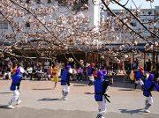 鶴川団地センター商店街はイベントがいっぱい♪