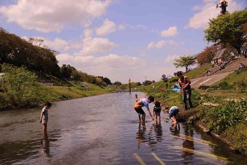 s-水遊びIMG_6532