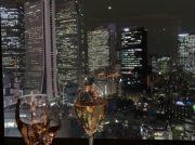 新宿の穴場!夜景も綺麗な和風ダイニング&バー FUGA(風雅)