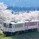 《増設》 4/22(月)★祝開通!東北中央自動車道で行く 置賜古木桜めぐり