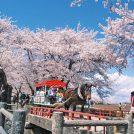 4/19(金)★展勝地桜まつりと 花巻の偉人を訪ねる