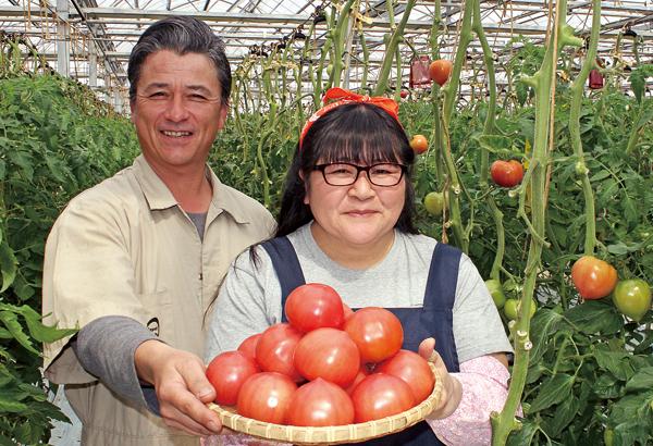 トマト生産者