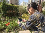 横浜の地域特派員って何するの?活動内容を紹介!
