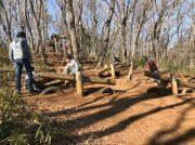自然の中のアスレチックは遊びきれない楽しさ!『都立野山北・六道山公園」