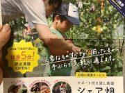 【開業】駅から5分!サポート付き貸し農園「シェア畑 下高井戸」が3/23オープン