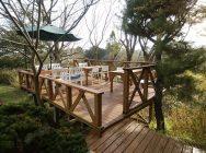 自然のふちに建つ白いお家。あふれる緑と光が染みる川西「Cafe 萌木」