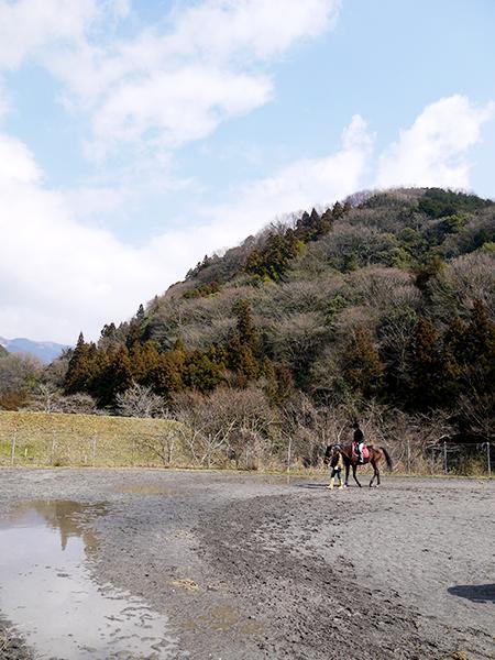 乗馬体験中@P2320721