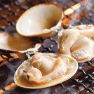 房総へ旬の貝を食べに行こうかい