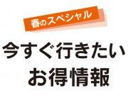〈春のスペシャル〉今すぐ行きたい!お得情報(+クーポン特集)