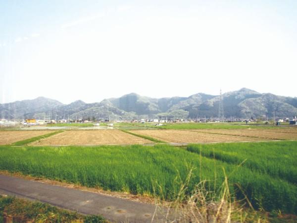 karasawasan0_4002