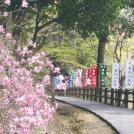 春の佐野を歩く~唐澤山城跡・唐澤山神社・赤見温泉~