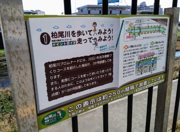 kasiogawa_600_01