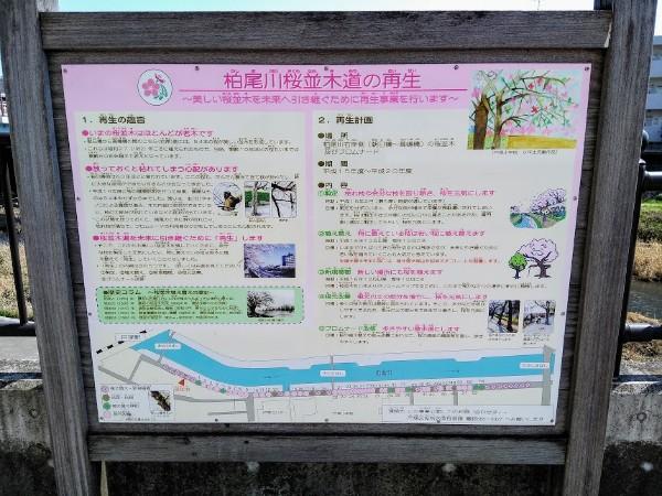 kasiogawa_600_06