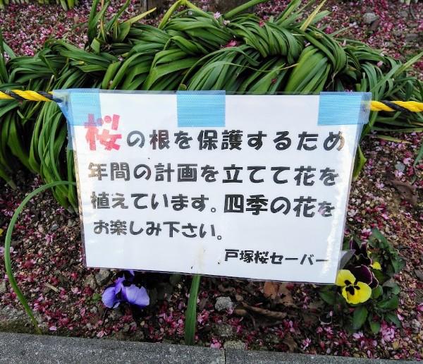 kasiogawa_600_06b