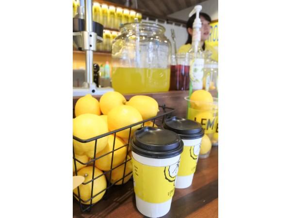 lemonade (4)