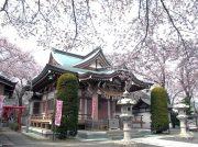 「はじめての書道体験 ~桜咲く神社で千字文を習う~」参加者募集中!