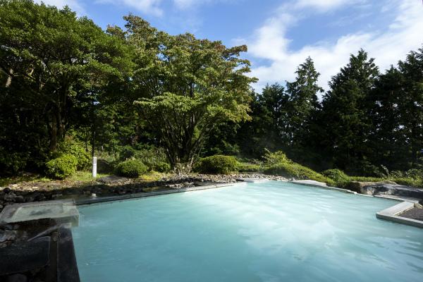白濁硫黄泉の露天風呂「箱根湯の花プリンスホテル」ペア宿泊券プレゼント