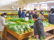 新鮮野菜や地元産品を買いに行ける北摂や周辺エリアの農産物直売所を紹介