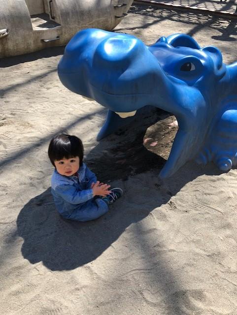 遊具いっぱい!【春のお散歩】新宿中央公園