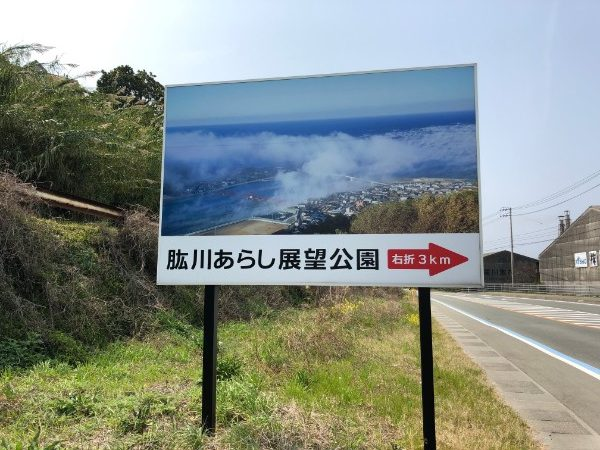 0329sakura 001