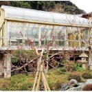 旧吉田茂邸サンルームなど3件が新たに国登録有形文化財に登録