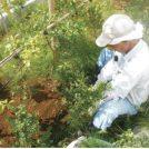 藤沢市が空き家対策にシルバー人材センターを活用