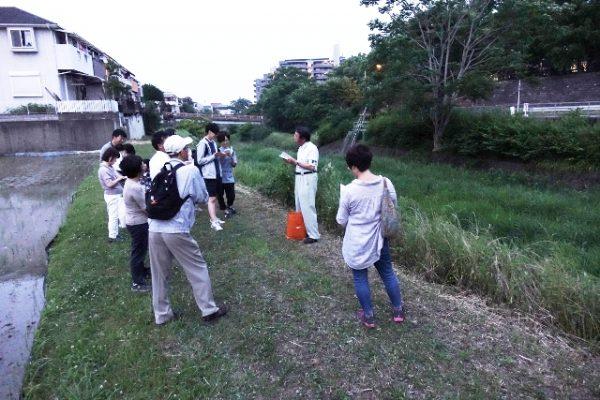 サイズ修正【明るさ補正後】勝尾寺川20170610-1-1