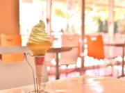 GWは手賀沼散歩と米舞亭(まいまいてい)のソフトクリームを@我孫子