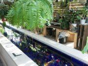 稲毛 植物に囲まれた癒しカフェ「FARMER'S KITCHEN(ファーマーズ キッチン)」