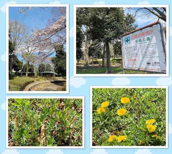 上尾・平塚公園