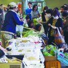 「あおばマルシェ」で青葉区産の新鮮野菜を買おう