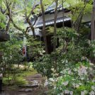 日進市で見つけた、おとぎ話のような和庭園カフェ「森の響(もりのおと)」
