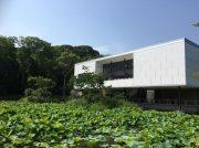 待望の「鎌倉文華館 鶴岡ミュージアム」開館! 鎌倉散策の楽しみが増えました
