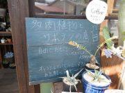 【久米郡久米南町】植物とコーヒー『多肉植物屋たなかまる』