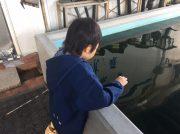 【池袋】ワンコイン!?デパートの釣り堀『フィッシュショップ』は子連れに大人気!