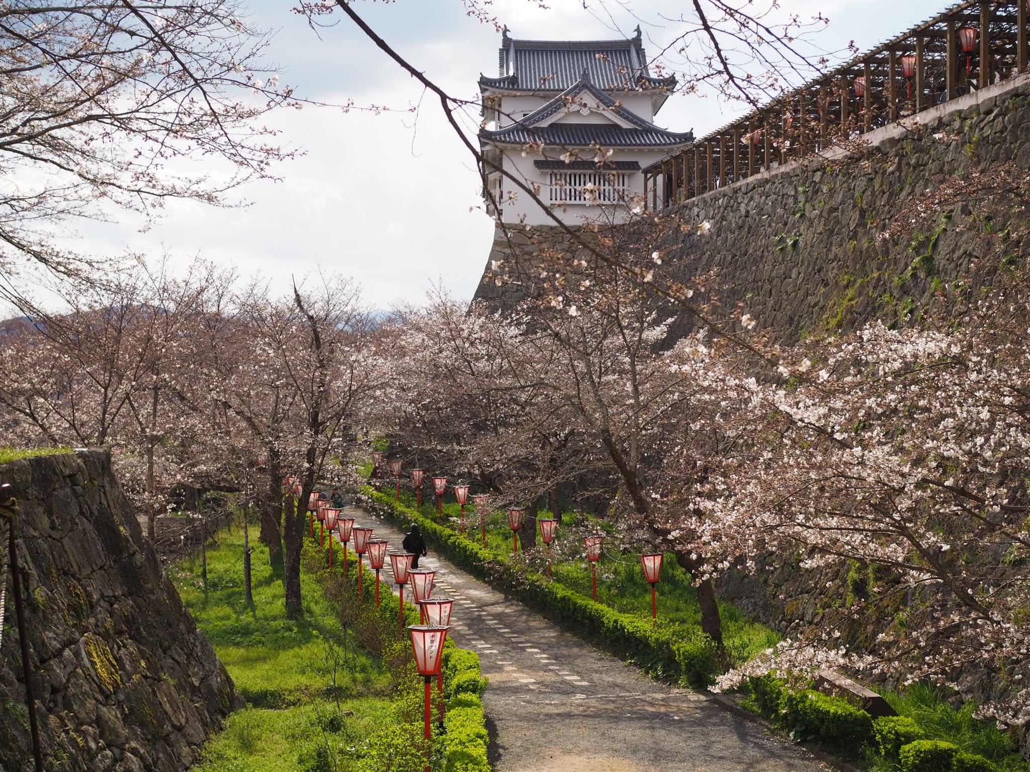 tsuyamajou