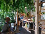 おうちに木漏れ日を・・・。好き!が見つかるグリーンと雑貨のお店@西鎌倉