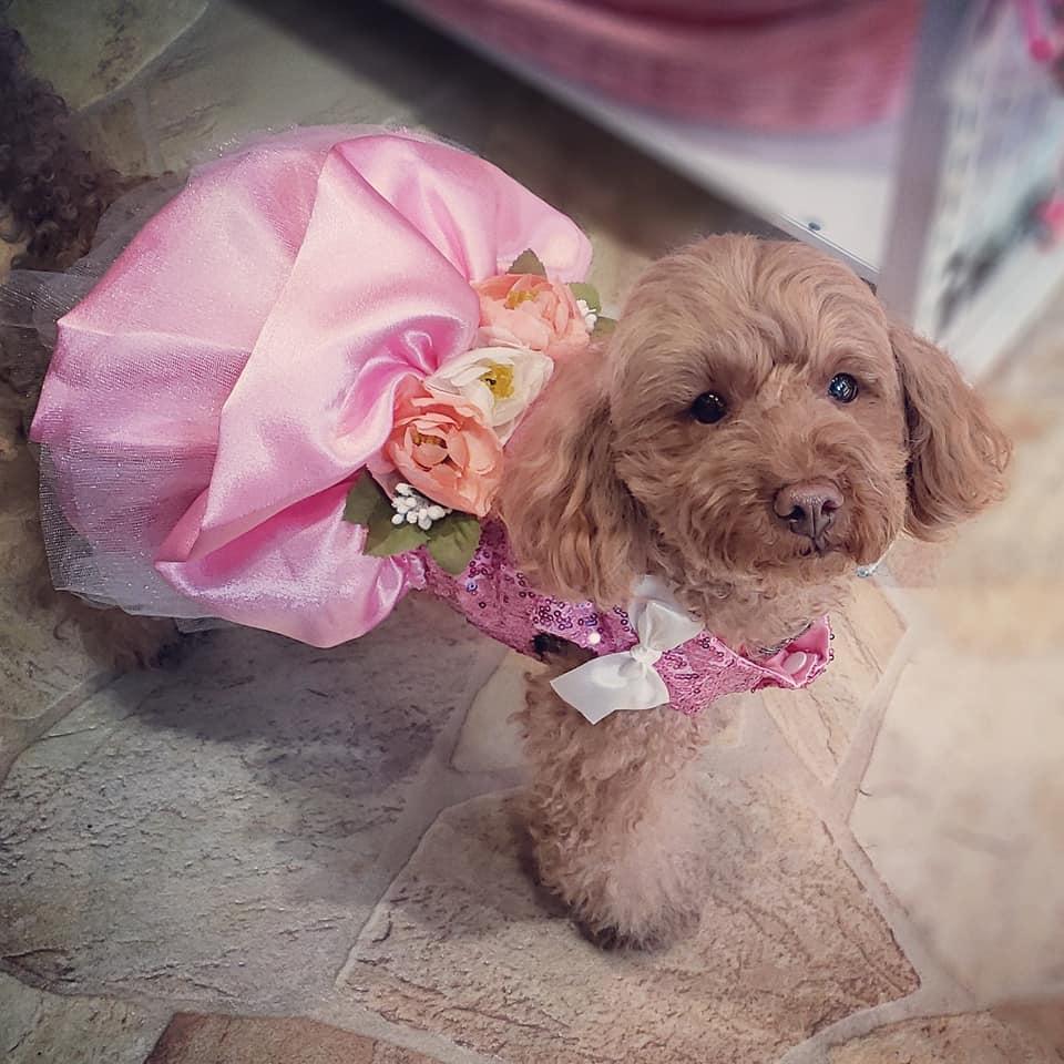 花のドレス