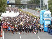 「横浜マラソン2019」ランナー募集