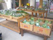 登米市直送の新鮮な野菜と美味しい食材!!「登米市物産直売所」青葉区
