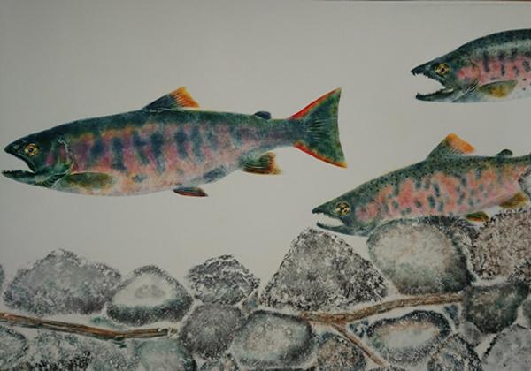 魚拓展 in SENDAI